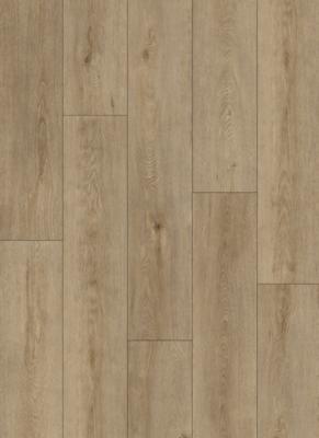 Vinylová podlaha Spring oak honey