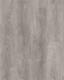 DUB VINIČNÍ - 2/2